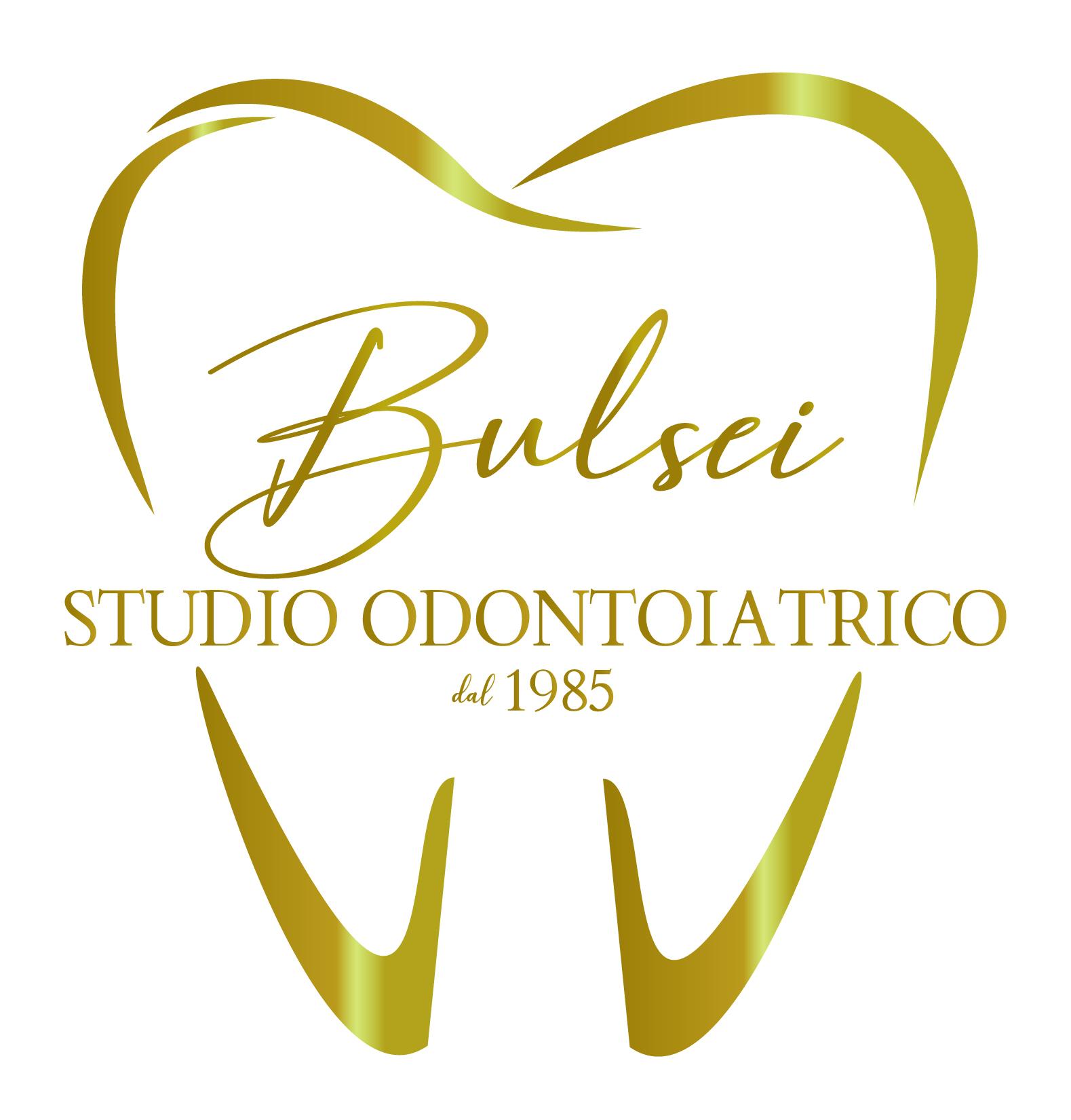 Logo Bulsei Davide Masia